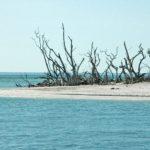 Ferienhaus Cape Coral Florida günstig. deutsche vermieter