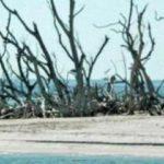 Ferienhaus Cape Coral Fort Myers deutsche vermieter