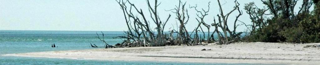 Ferienhaus Cape Coral deutsche Vermieter privat. Strand von Sanibel Island