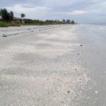 Ferienhaus Fort Myers deutsche vermieter privat